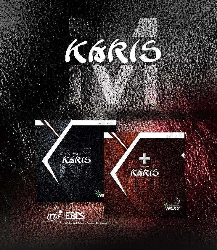 karis_banner.jpg